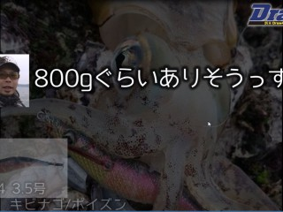 SnapCrab_NoName_2016-4-28_10-44-23_No-00